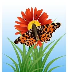 Realistic butterfly on flower vector image