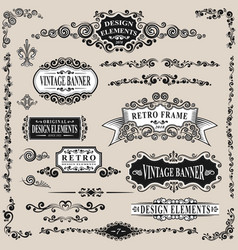 retro label and vintage elements set vector image