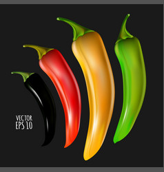 set black red amber green peppers isolated on vector image