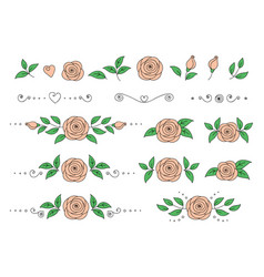 set pink roses with leaves vector image