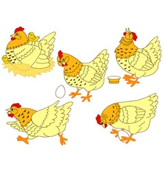 Chicken set vector