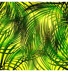 Jungle Palm Leaves Background vector image vector image