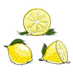 ripe lemon with leaf vintage vector image vector image