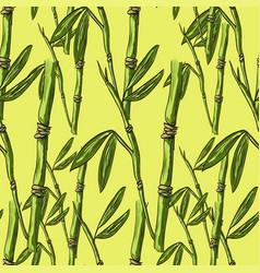 Bamboo patterrn vector