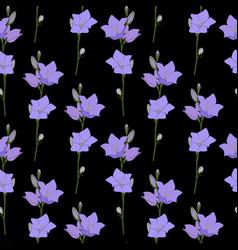 hand drawn campanula flower seamless pattern vector image