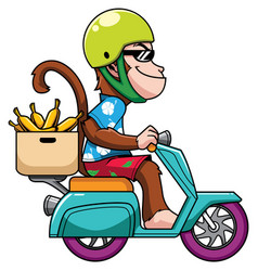 Monkey on motor bike vector