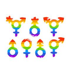 set of gender lgbt symbols vector image