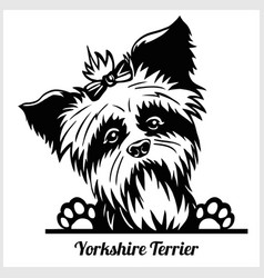 Yorkshire terrier - peeking dogs - - breed face vector