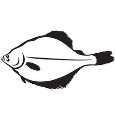 flatfish vector image vector image