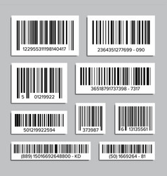 bar code set abstract product bar codes vector image
