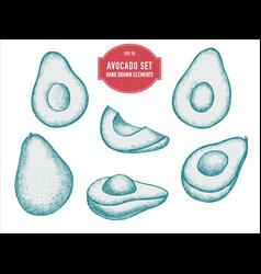 collection hand drawn pastel avocado vector image