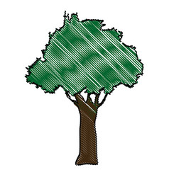 Drawing natural tree foliage image vector