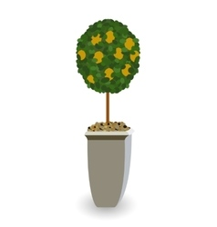 Home Green Plant in Nice Pot vector image