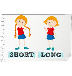 Opposite adjectives short and long vector image