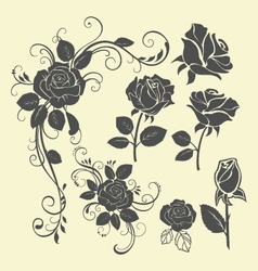 rose tattoo vector image