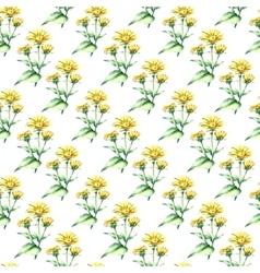 Watercolor elecampane herb seamless pattern vector