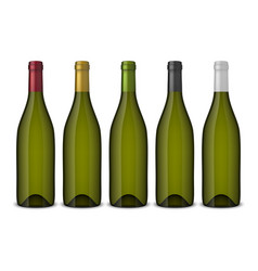 5 realistic green wine bottles without vector image vector image
