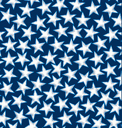 Embroidery white stars in a seamless pattern vector image vector image