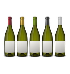 5 realistic green wine bottles with white vector