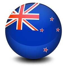 A soccer ball with the flag of New Zealand vector