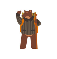 bear travelling with backpack and staff cute vector image