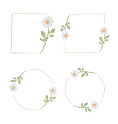 beautiful minimal white daisy flower frame vector image
