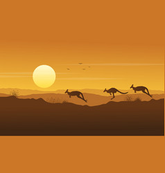 Beauty scenery kangaroo silhouette collection vector