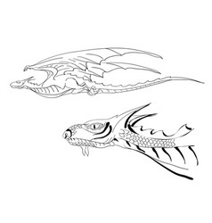 Dragon and dragon head vector