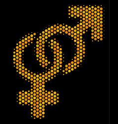 hexagon halftone heterosexual symbol icon vector image