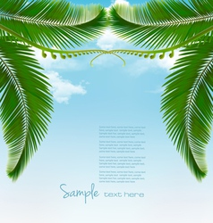 Palm leaves on sky vector image