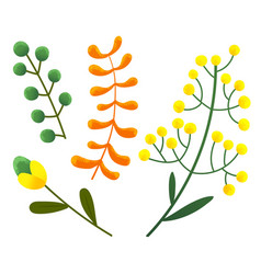 plants with yellow round flowers orange leaves vector image