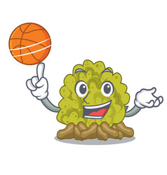 With basketball green coral reef in character vector