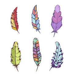 set of decorative hand drawn feathers vector image vector image