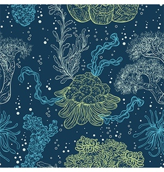collection of marine plants leaves and seaweed vector image