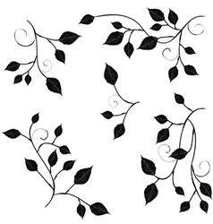 Collection for designers branches with foliage vector image
