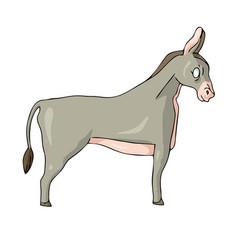Donkey on white background cute cartoon vector