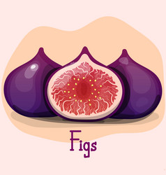 Figs purple whole fruit and half summer tropical vector