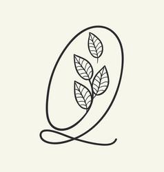 handwritten letter q monogram or logo brand vector image