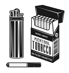 smoking elements and accessories objects vector image