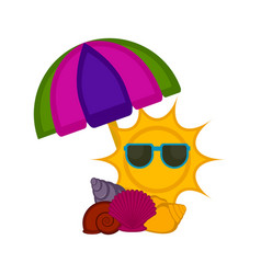 umbrella with seashells and a summer sun vector image