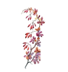 Watercolor with autumn dogwood vector