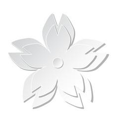white paper cutting cherry blossom flower art vector image