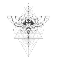 With hand drawn dead head moth and sacred vector
