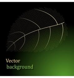 gold leaf background vector image vector image