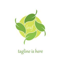4 leaf logo template design vector image