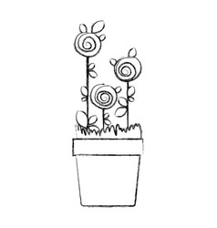 blurred silhouette drawing roses planted with vector image