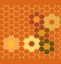 honeycomb sign vector image