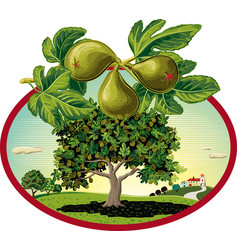 Oval frame with figs in orchard landscape vector