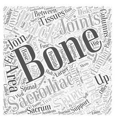 Sacroiliac Bones and Back Pain Word Cloud Concept vector image