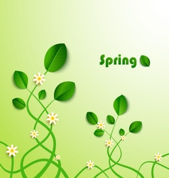 Spring card with green leaves and flowers vector image